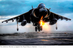 2011_07_07_harrier_DT